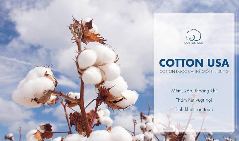 Chất liệu cotton làm quần lót